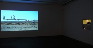 Tamir Zadok Untitled. video work