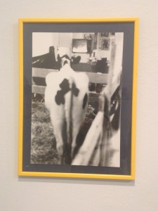 Dov Or Ner , Wathching news with a cow , performence 1980