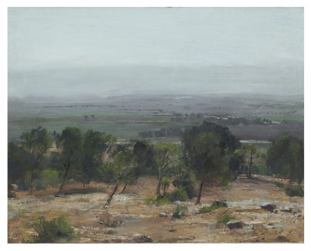 Uri Blayer Trees and Valley 61X76 cm,2015