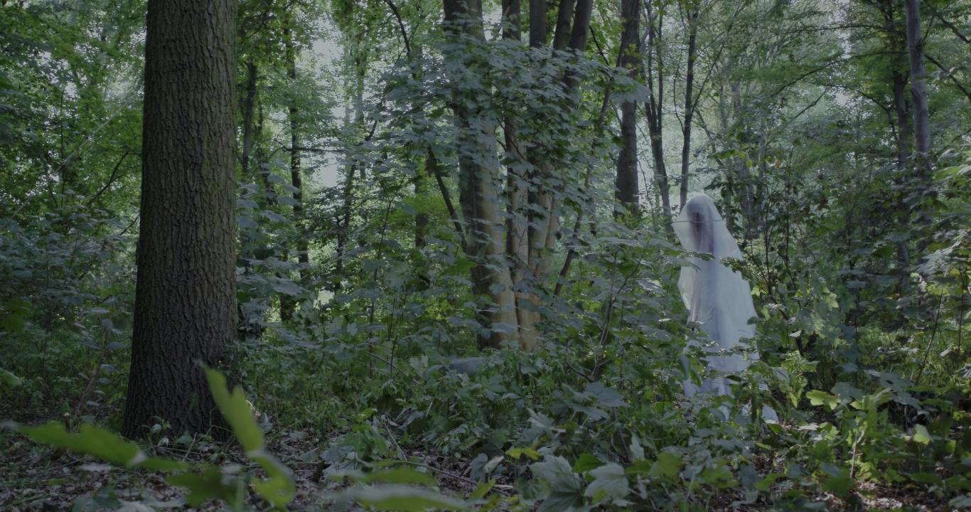 """""""שר היער"""" עדן  אורבך עפרת"""